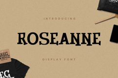 Roseanne Font Product Image 1