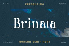 Brinata Font Product Image 1