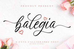 Balegia - a Cute Calligraphy Product Image 1