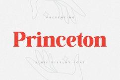 Princeton Font Product Image 1