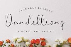 dandellions Product Image 1