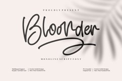 Bloonder Product Image 1