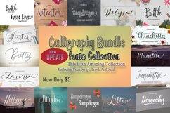 Calligraphy Font Bundles Product Image 1