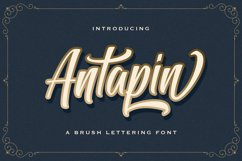 Antapin - Bold Script Font Product Image 1