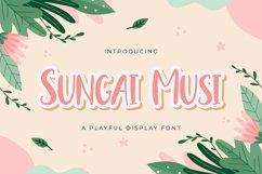 Sungai Musi - Playful Display Font Product Image 1