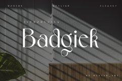 Badgiek   Modern Stylish Product Image 1