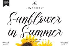 Sunflower In Summer | handwritten font Product Image 1