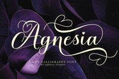 Romantic Script Fonts Collection Product Image 4
