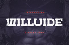Willuide Font Product Image 1