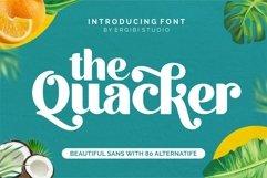 Quacker Product Image 1