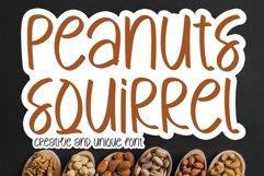 Peanuts Squirrel Product Image 1