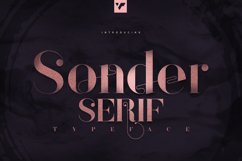 Sonder Serif Typeface - 5 weights Product Image 1