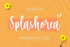 Splashorea Font Product Image 1