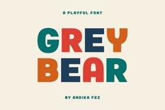 GREY BEAR Product Image 1