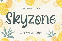 Skyzone Product Image 1