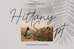 Hittany Product Image 1