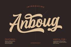 Anboug Product Image 1