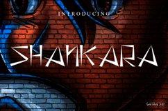 Shankara Product Image 1