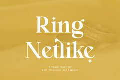Ring Netlike - Classic Serif Font Product Image 1