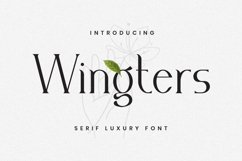 Wingters Font Product Image 1