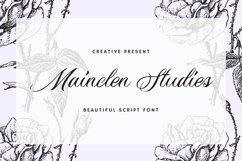 Mainclen Studies Font Product Image 1