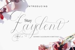 Stay Zaydent Product Image 1