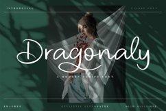 Dragonaly Product Image 1