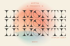 Le Monte | Serif Display Product Image 1