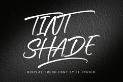 Tint Shade | Display Brush Font Product Image 1