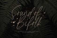 SoundOfBifolk Font Product Image 1
