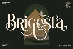 Brigesta - Serif Display Font Product Image 1