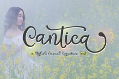Cantica Script - A Hand-Written Calligraphy Font Product Image 1