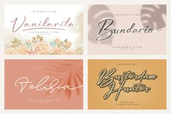 Spectacular All Collection Mega Font Bundle Handwritten Product Image 2