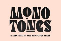 Monotones Font Product Image 1