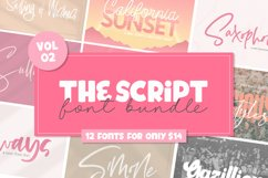 The Script Font Bundle - Vol 02 Product Image 1