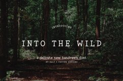 Into the Wild Serif Font Product Image 1