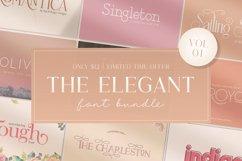 The Elegant Font Bundle - Vol 01 Product Image 1