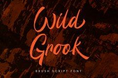 Wild Grook - Brush Script Font Product Image 1