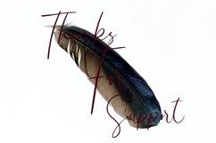 Lovely Signature Product Image 4