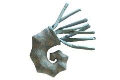 Ammonite PDF Plush Pattern Resizing Product Image 1