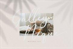 Halegio | Modern Calligraphy Product Image 5