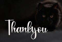 Black Catthie - Script Font Product Image 3