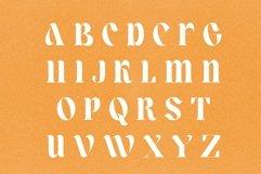 Lower Coast | Serif Display Product Image 5