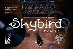 Skybird Family - Crazy, unique & retro Product Image 1