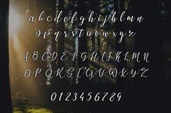 Web Font Shadows Product Image 3