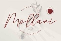 Web Font Mellani - Beauty Signature Font Product Image 1