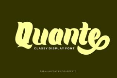 Premium Font Bundle Product Image 5