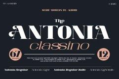 ANTONIA - The Classino Serif Product Image 1