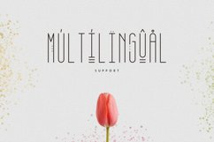 [Spring Vibes] April Display Font Product Image 5
