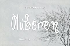 Auberon Font Product Image 1